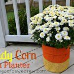 Candy Corn Mum Planter