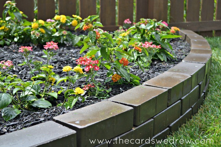 butterfly flower garden