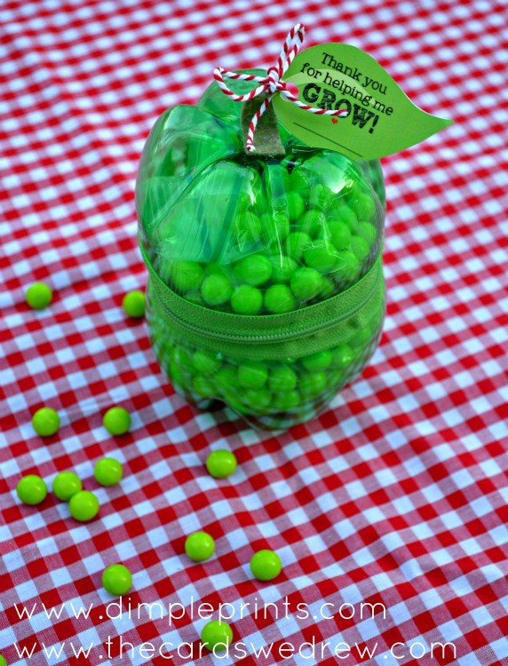 diy soda pop bottle apple case with zipper