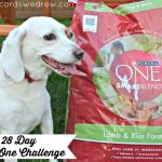 Our dog's Purina One 28 Day Challenge