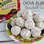 Cocoa Almond Snowball Cookie