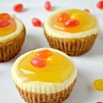 Lemon Sugar Cookie Mini Cheesecakes