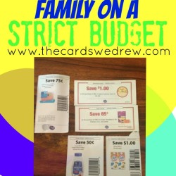 How to feed your family on a strict budget