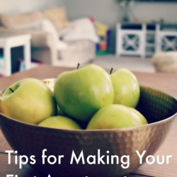 Tips for Making Your First Apartment Home