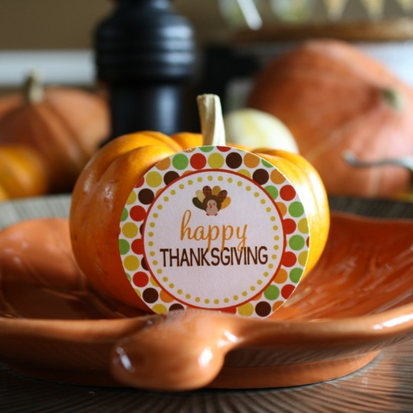 DimplePrintsThanksgivingPlacesetting-600x600