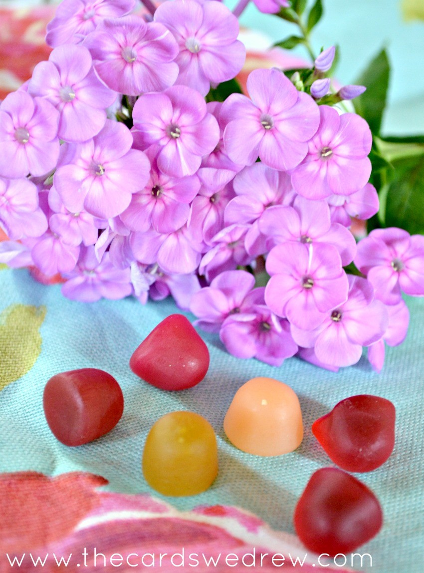 daily gummy vitamins