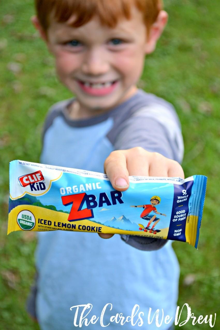 organic-snack-bars