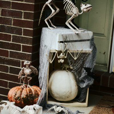 Pet Cemetery Halloween Front Door Decor