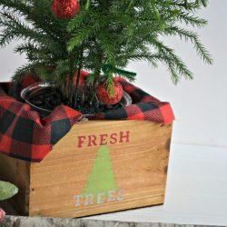30 Minute Gift Idea: Fresh Trees Mini Tree Planter