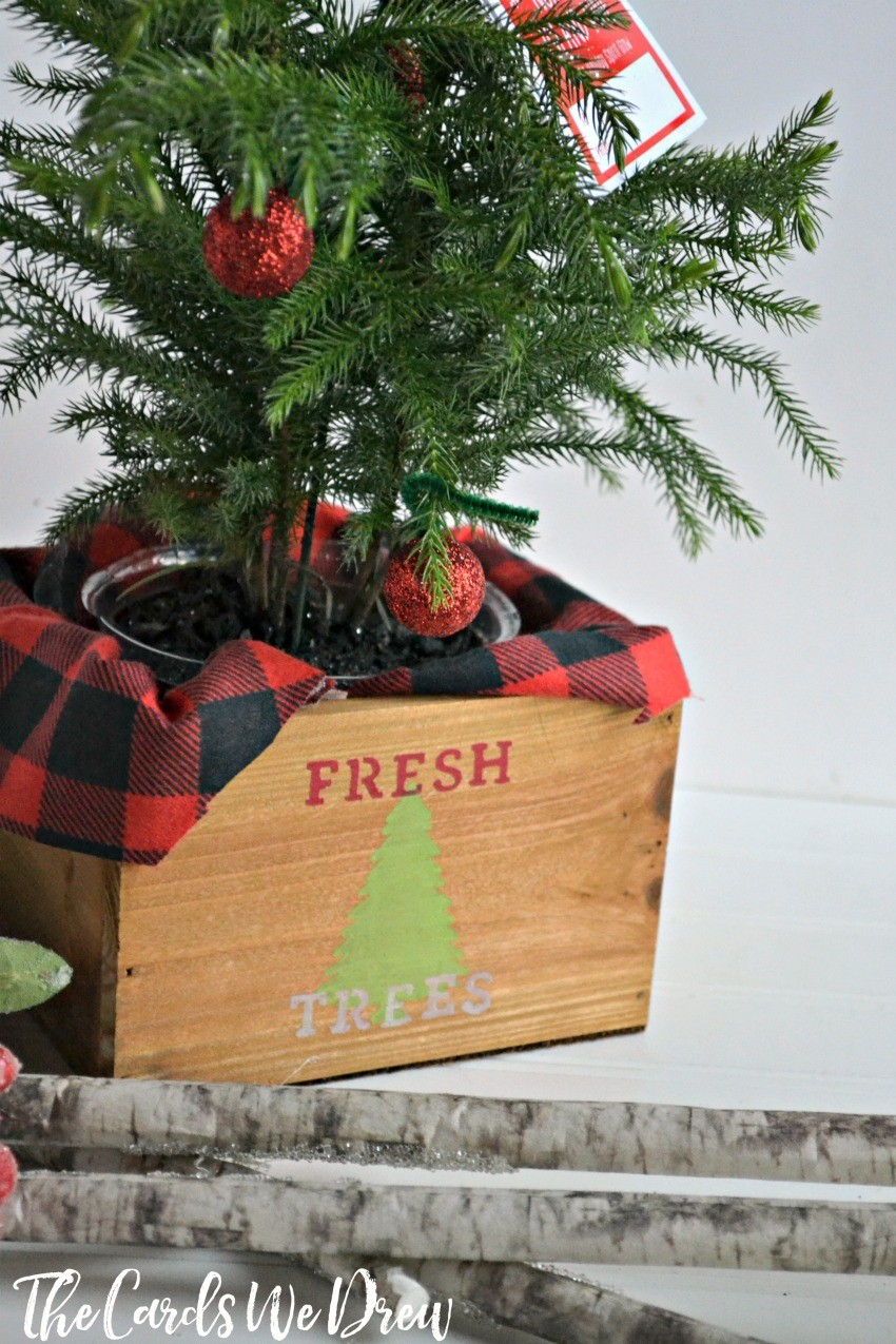 fresh-tree-planter-gift-idea