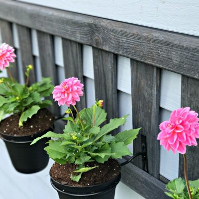 Spring Upcycled Ladder Planter