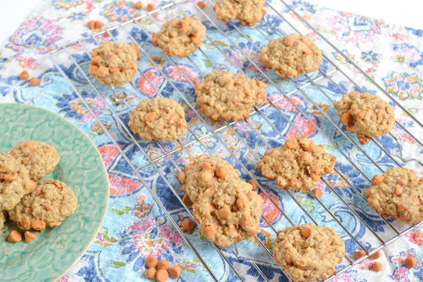 the best oatmeal scotchies