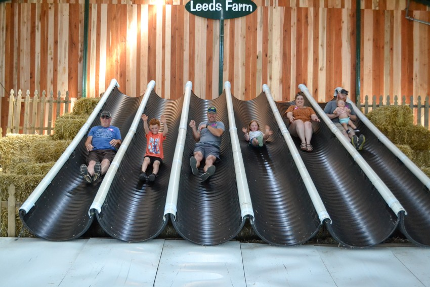 leeds farm family fun
