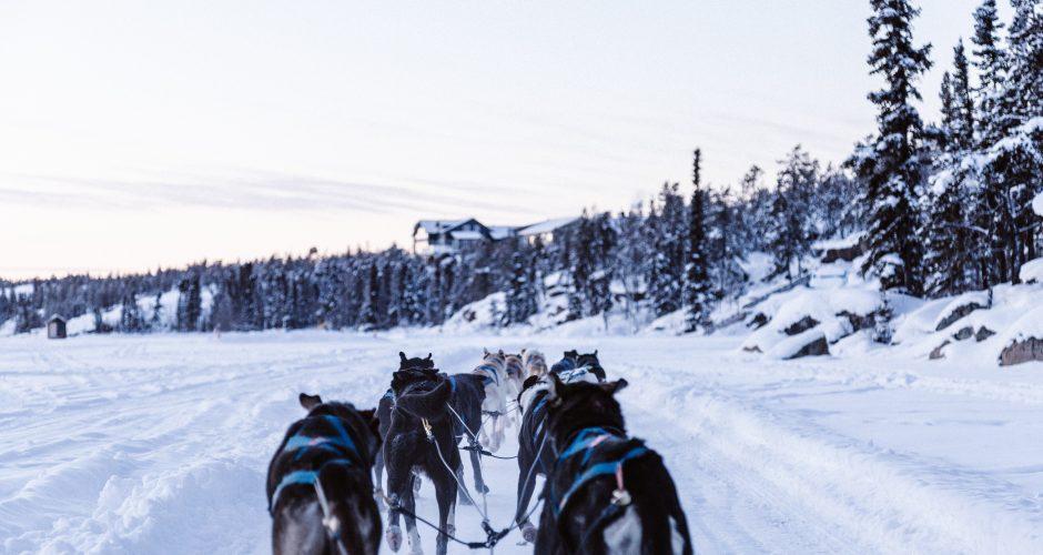 Best Winter Activities in Bozeman, Montana