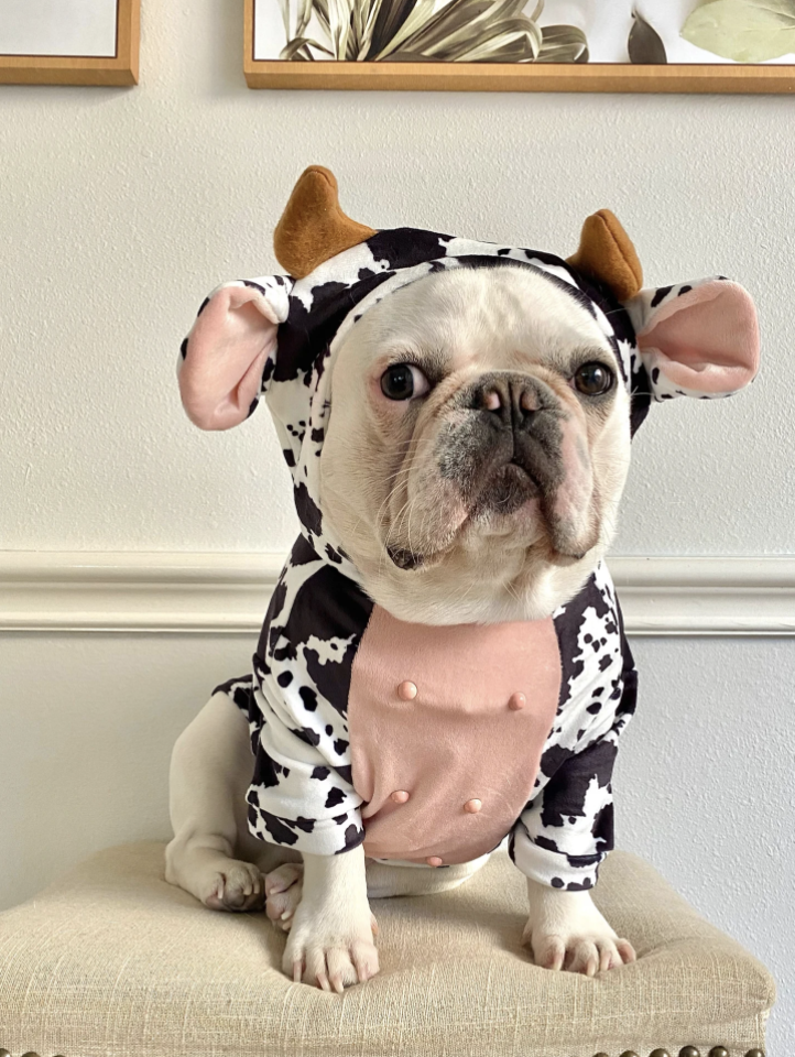 cow costume dog
