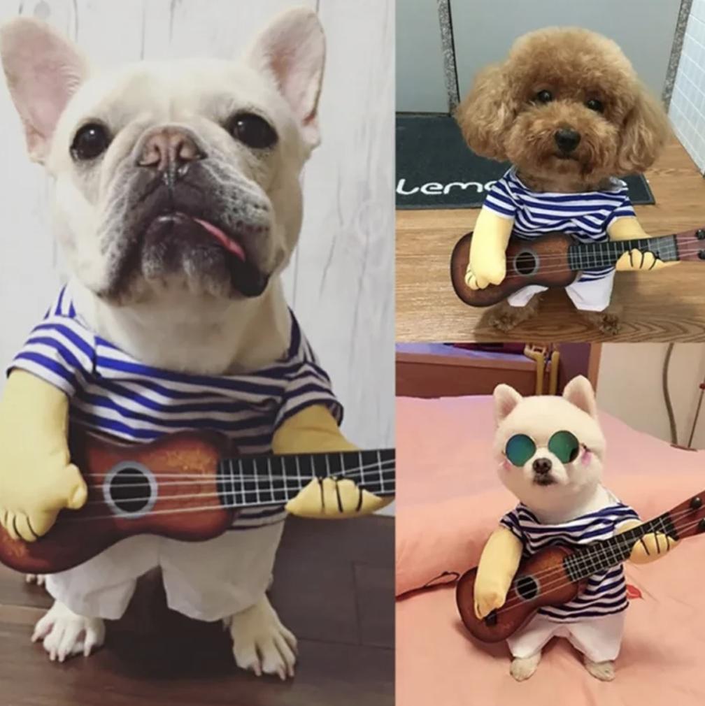 guitarist pet costume