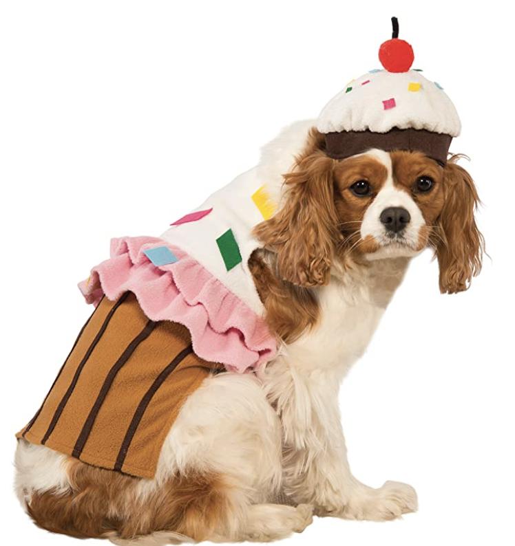 cupcake dog costume