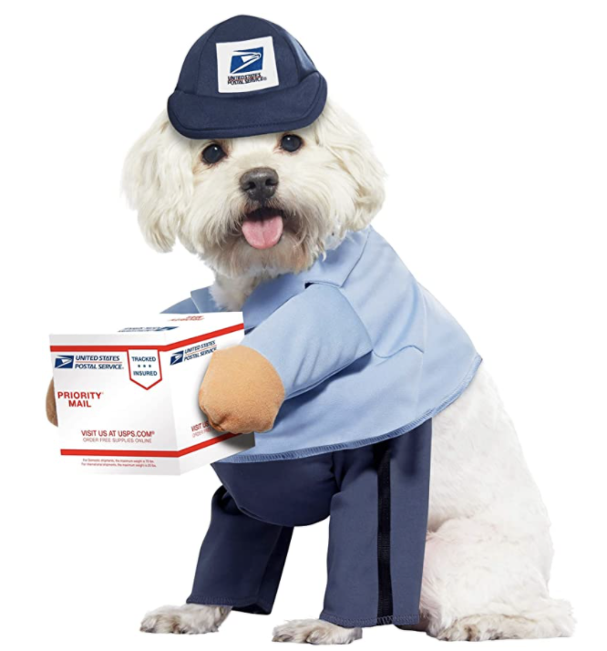 delivery driver dog costume